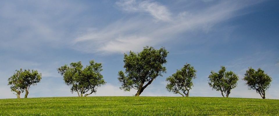 umweltfreundlicher