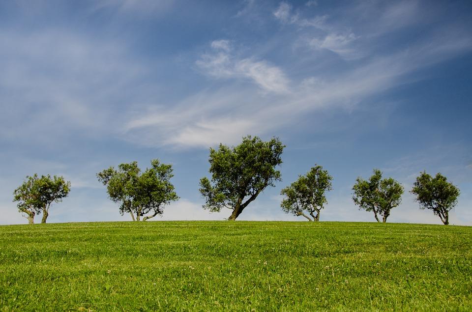 Sind Stoffwindeln umweltfreundlicher?